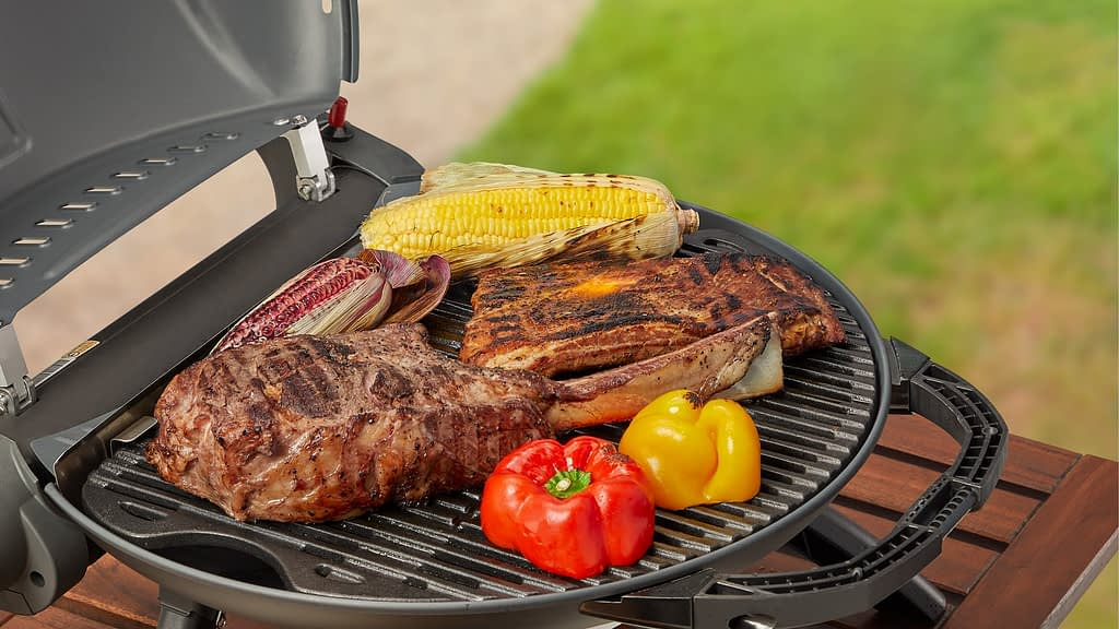 Portable Gas Grills- Butane Grills to do Barbecuing Outdoor